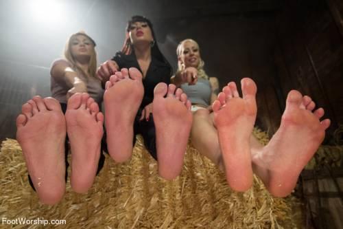 Erotic Feet Fuck Picture 1